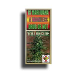 Is Marijuana a Harmless Drug or Not? You Decide
